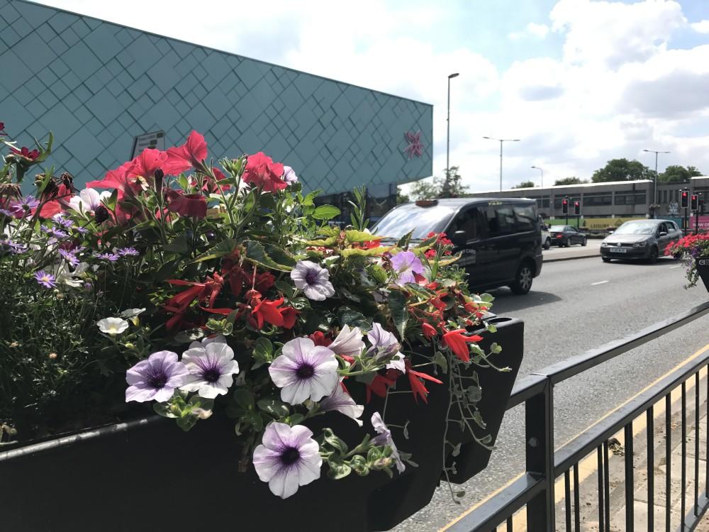 Northwich Gate Flowers