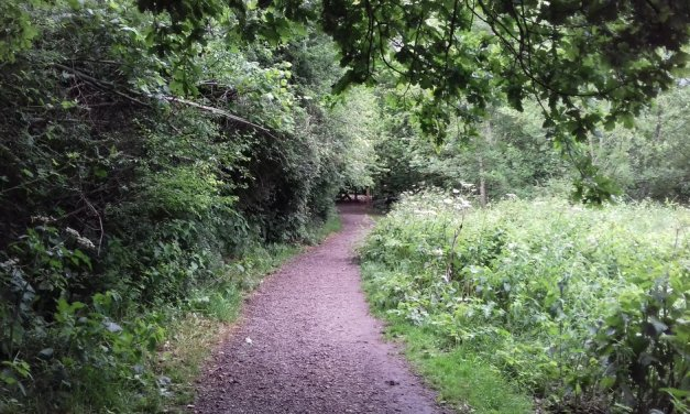 Works begin on a sustainable pedestrian route in Northwich