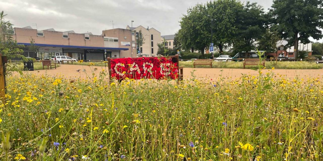 Yarn bombers brighten up Northwich with a floral theme