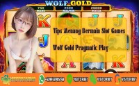 Tips Menang Bermain Slot Games Wolf Gold Pragmatic Play