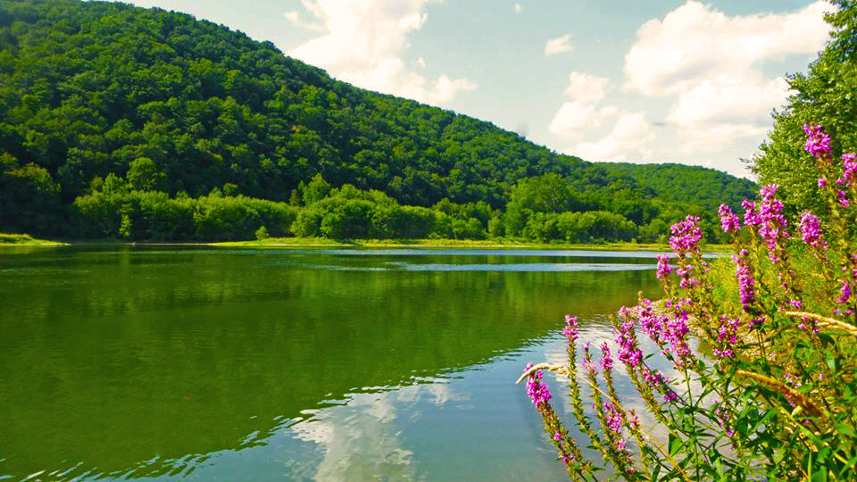 Get Out This Summer on the Allegheny River Water Trail