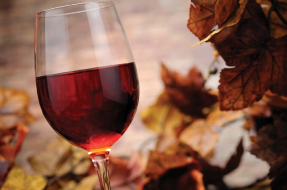 Celebrate Pennsylvania Wine Month in the Pennsylvania Great Outdoors