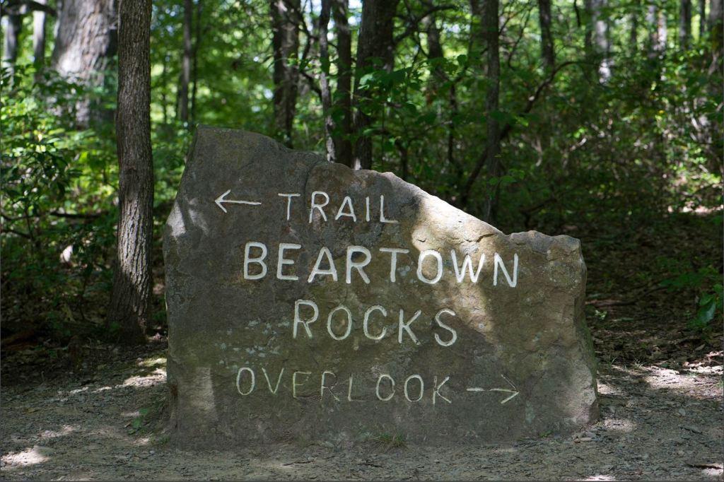 Beartown Rocks GinnyAllison