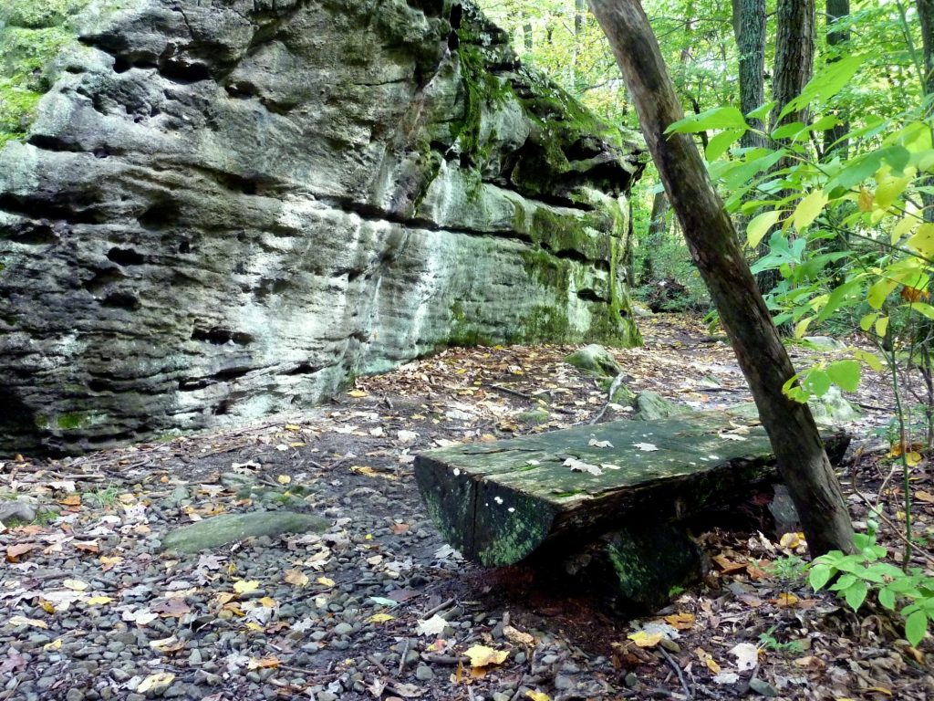 Beartown Rocks