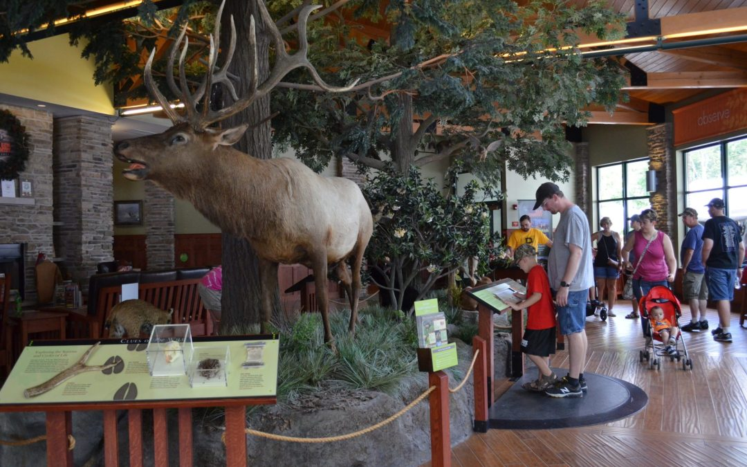 Elk Country Visitor Center Changing 4D Theater Presentation