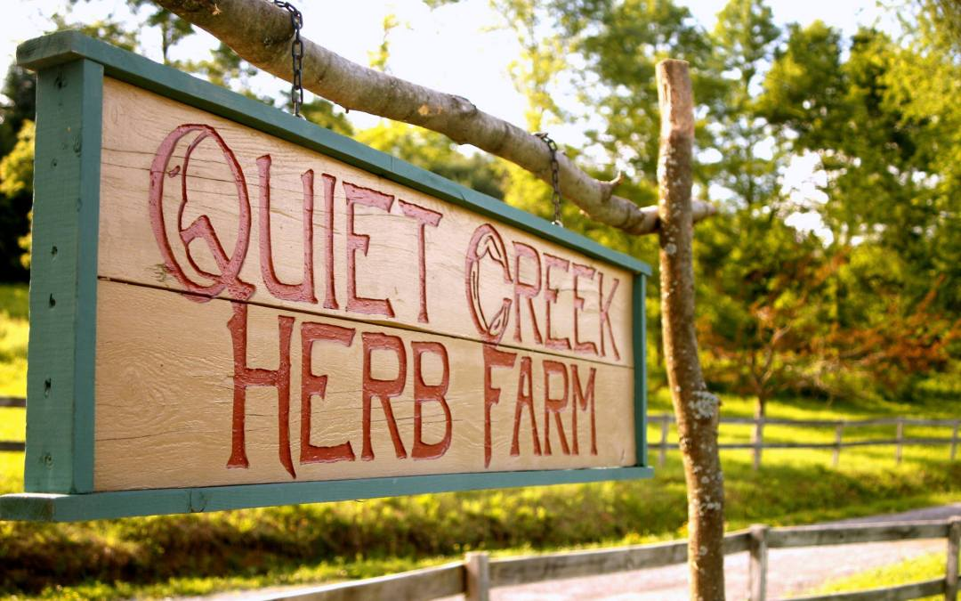 Learn Sustainable Living Skills at Quiet Creek Herb Farm and School of Country Living