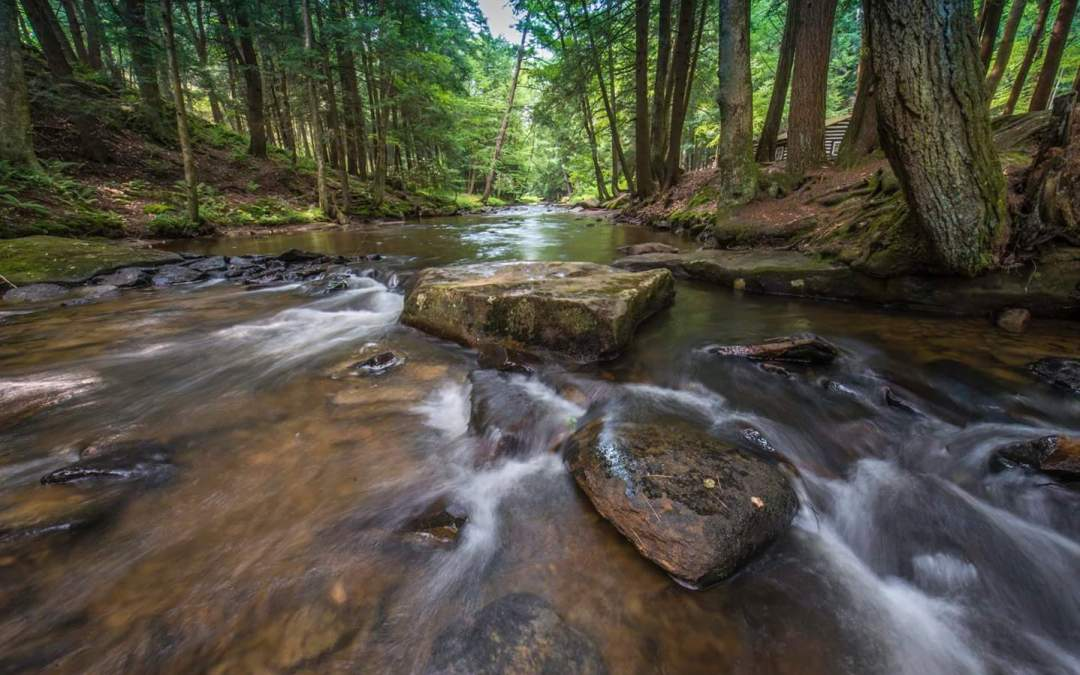 PA Great Outdoors Minute – State Parks