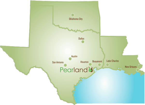 Pearland in Texas