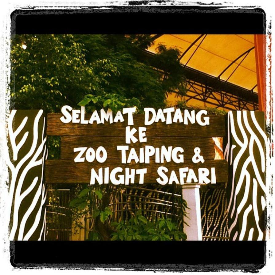 zoo-taiping
