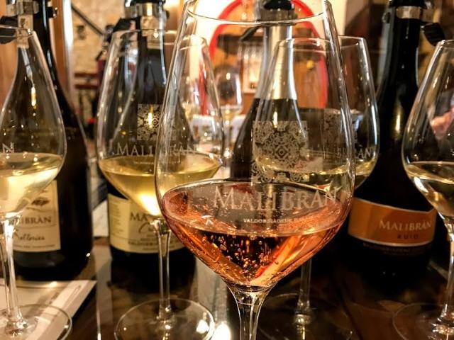 Visit Prosecco Italy Malibran Vineyard Tasting