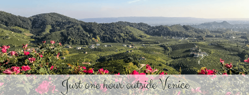 Visit Prosecco Italy Prosecco Region Views flowers