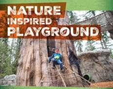 nature-inspired-playground_m (1)