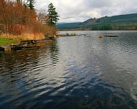 Kapowsin Lake © Gordon Campbell