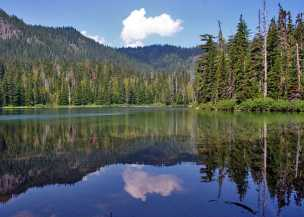Lake-Eleanor
