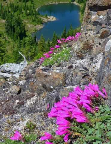 Looking-down-on-Lake-George