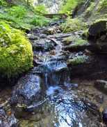 The trail crosses many bubbling creeks. © Craig Romano