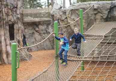 Play at the New Kids Trek Northwest Trek and Wildlife Park