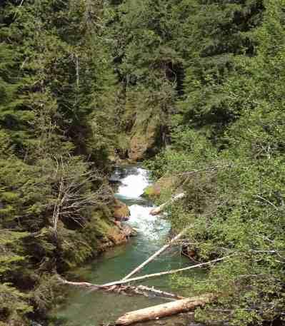 The rushing Ohanapecosh River
