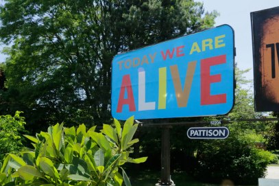 Today We Are Alive Steve Lambert