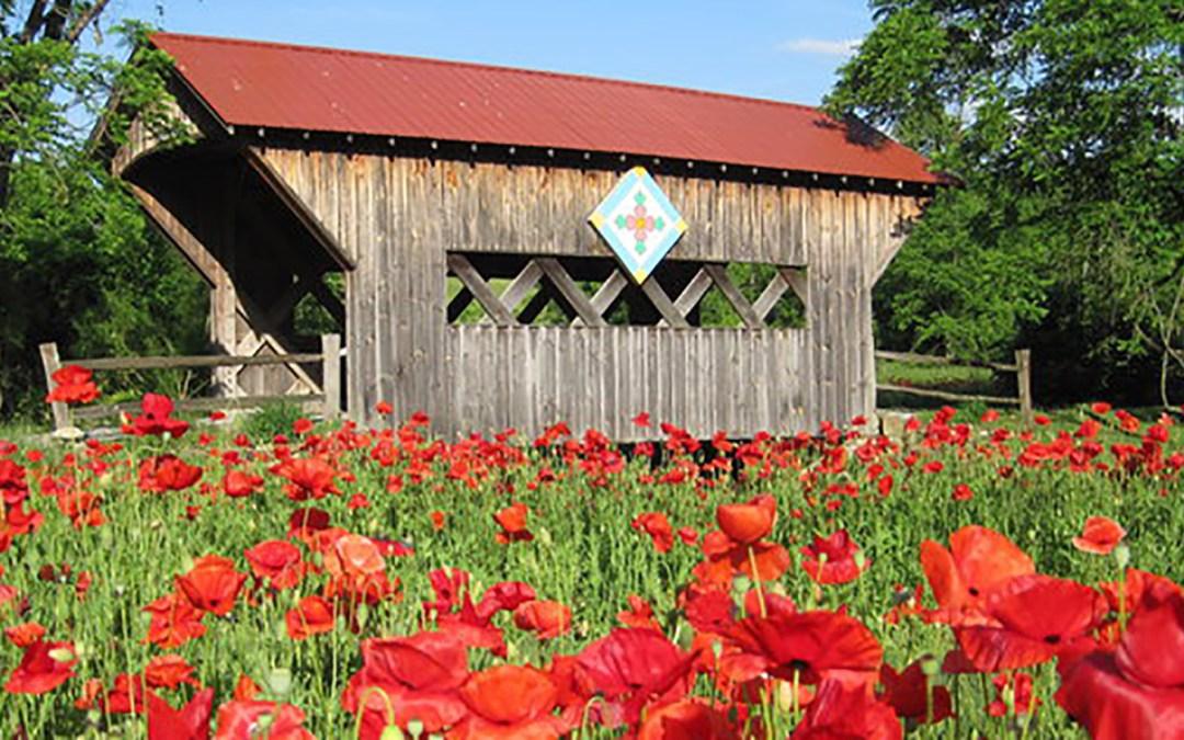 Farmhouse Gallery and Gardens