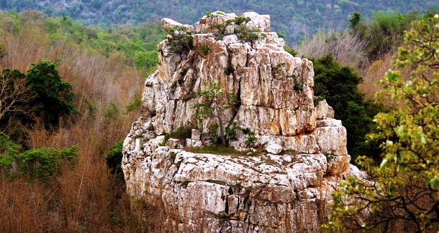 Elephant Tooth Rocks