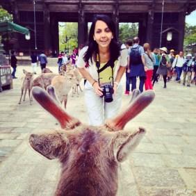 Ulu geyik, Nara