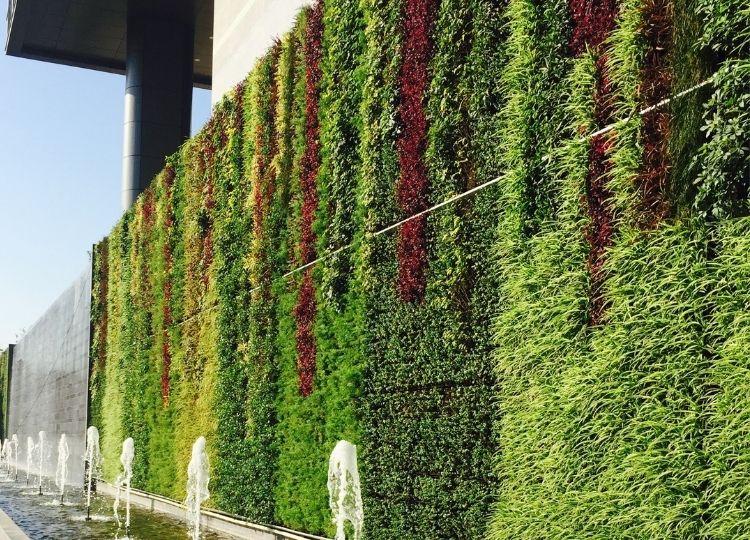 living green wall