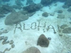 Aloha rocks