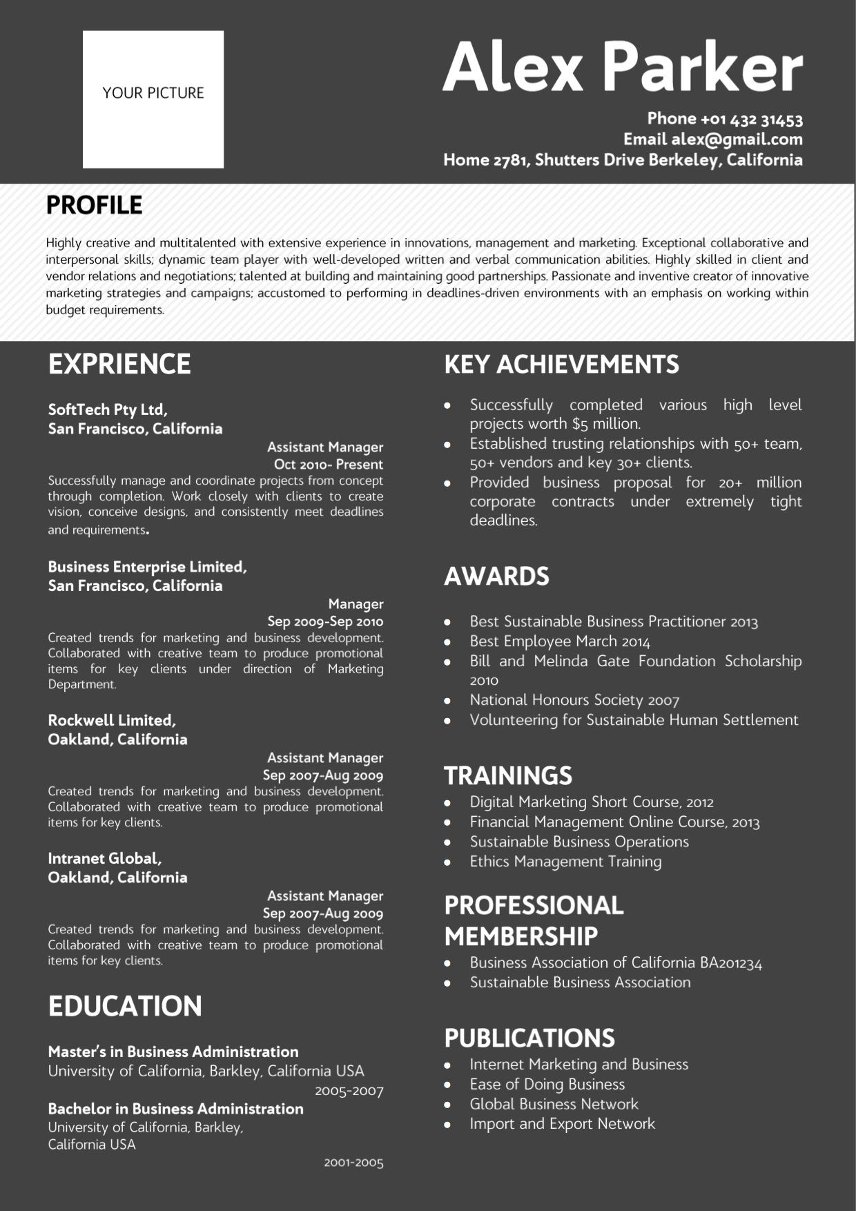 Professional Dark Background Resume blackwhite color Vista Resume