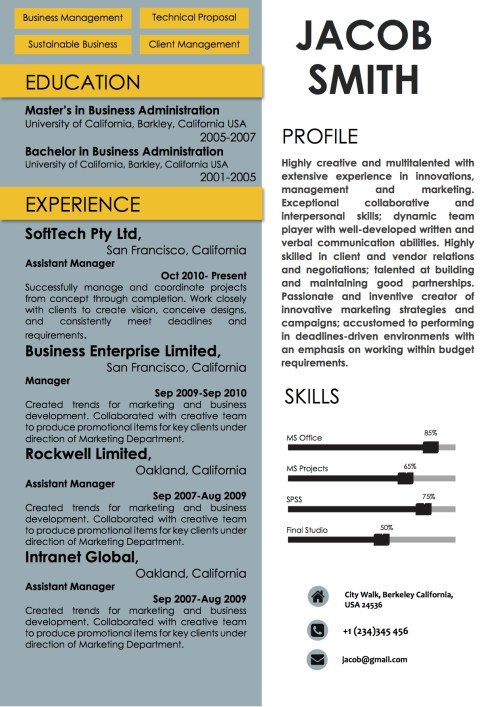 blue_yellow_resume_word_format