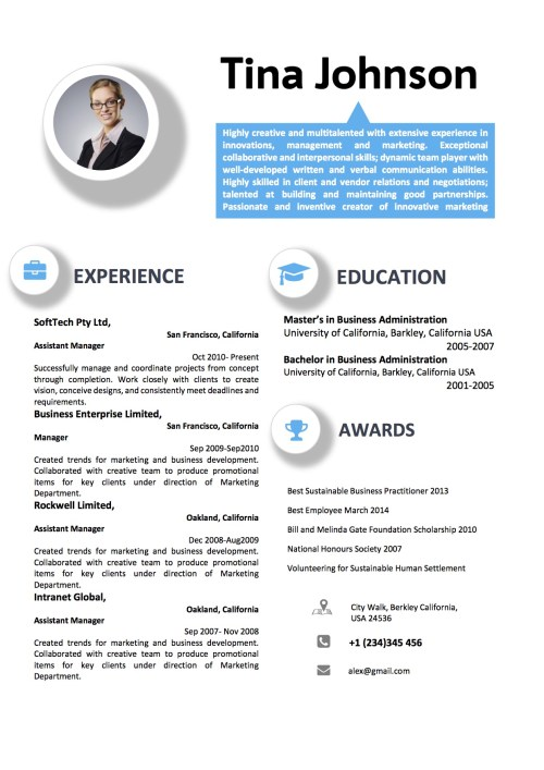 professional_blue_circular_icon_theme_resume