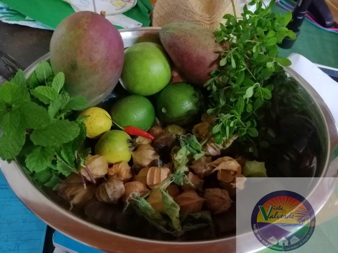 fruits from vista valverde san ramon costa rica
