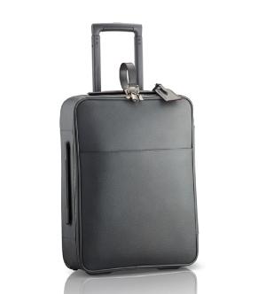6. Louis Vuitton Pégase55 Roller in Gray