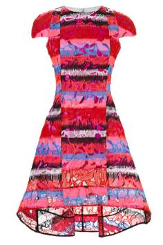 Peter Pilotto Leia Printed Lace Dress