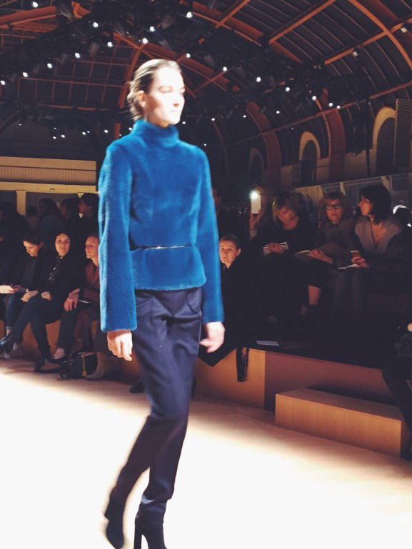Hermes fall 2015 Show