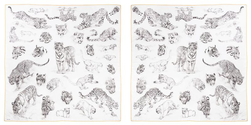 Hermes Robert Dallet Fierce and Fragile Hand Painted Scarf