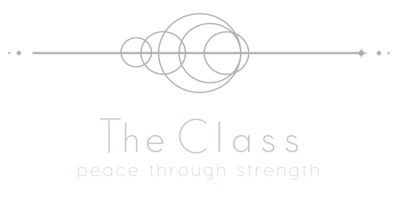 The Class by Taryn Mooney