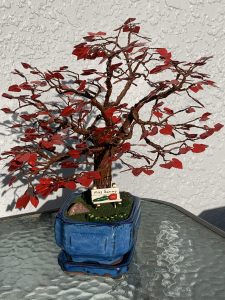 red blooms on a brown wire tree in a blue pot