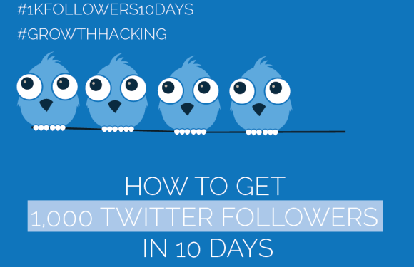 #Twitter Day 4 – Get 1,000 Twitter Followers in 10 Days [#1kfollowers10days #GrowthHacking]