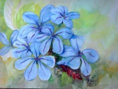 A cluster of blue plumbago flowers inspiration photo by Cindy Knoke. Painting by Lucy Lowry