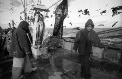 la-pesca-by-alfonso-de-castro-2