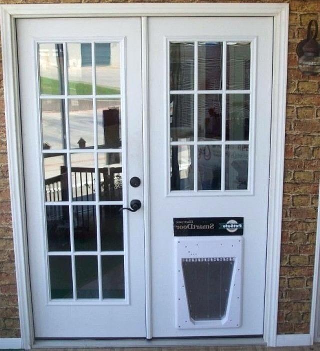 exterior door with built in pet door
