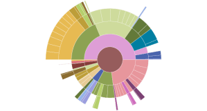Sunburst Diagram  Charts  Data Visualization and Human Rights