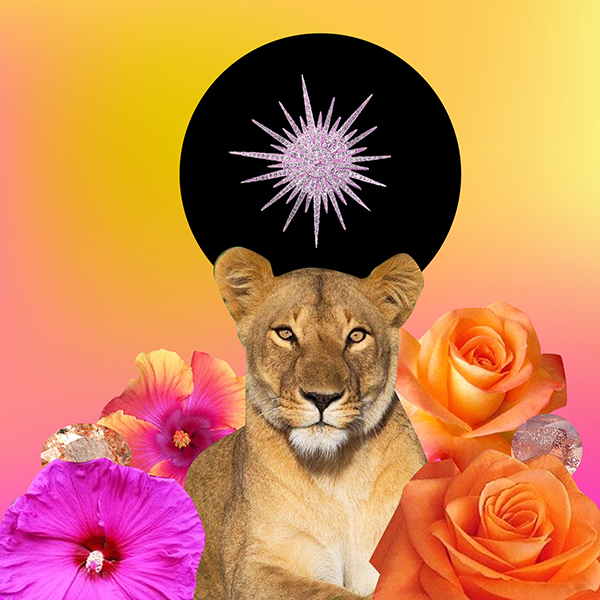 2019 New Moon July in Leo Supermoon