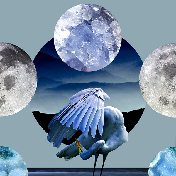 March 2020 Full Moon Tarotscopes and Original Artwork by Sarah Faith Gottesdiener Many Moons Modern Women Visual Magic