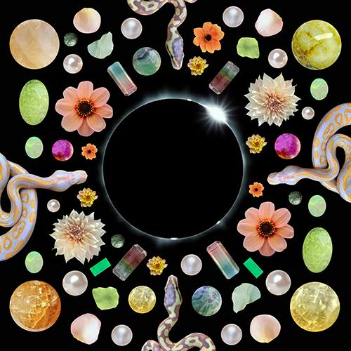 March 2020 New Moon Original Artwork by Sarah Faith Gottesdiener Modern Women Many Moons Visual Magic