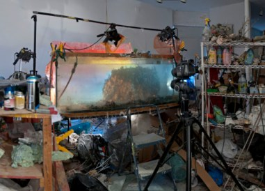 h1226-studio-view-for-hawaii-2013