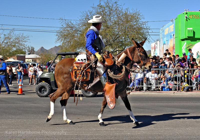 Rodeo Parade 711 Imp Visualriver S Blog