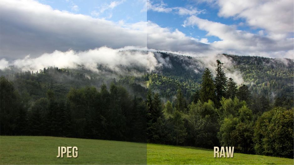Différences entre le fichier JPEG et le fichier RAW (source : Know Techie https://knowtechie.com/difference-raw-jpeg-file-format/)