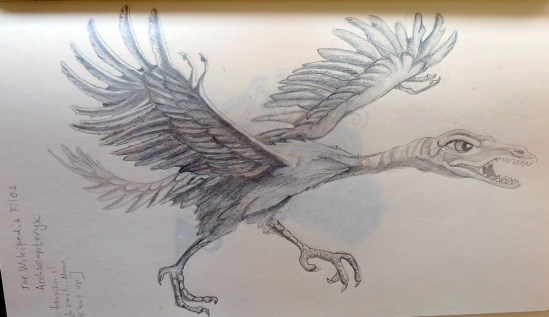 archeoptaryx, pencil 2h, 2b